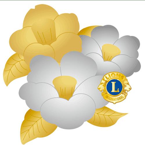 2019年〜2020年 地区アワードバッジ - ライオンズクラブ国際協会334-D地区
